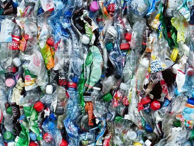 what is the best bottled water