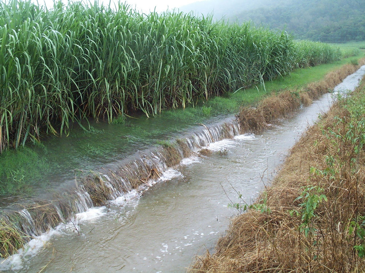 Groundwater Pollution Vs Surface Water Pollution Which Is