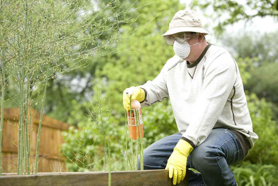 contamination of pesticide