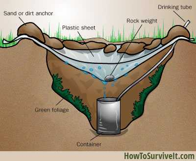 natural water filtration